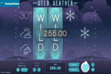 Wild Weather slot